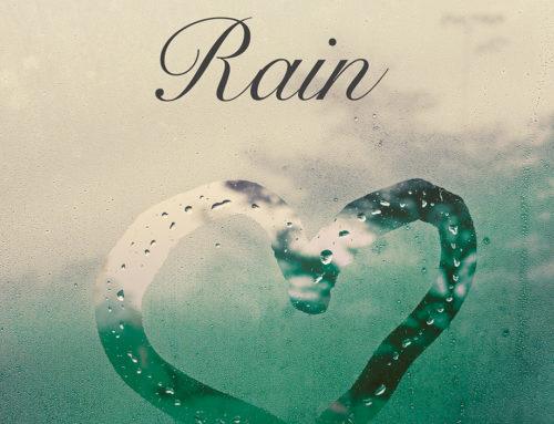 Soundtrack – King of Rain